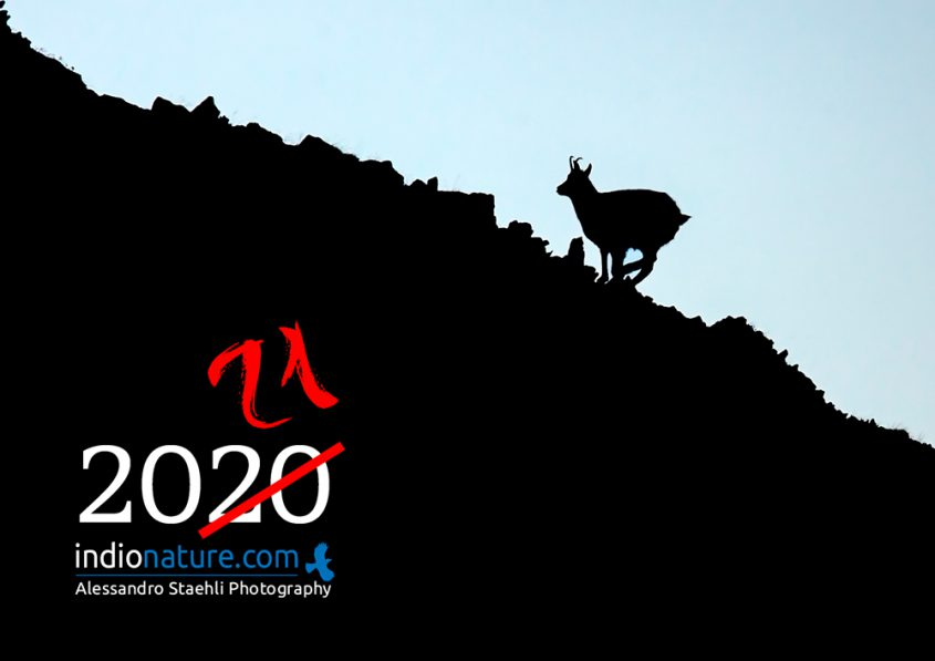 Calendrier-Indionature-2020-couv-1000px-845x597.jpg
